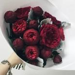 Пионовидные розы 1