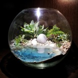 Флорариум в аквариуме с водой_ArtFloria_2