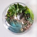Флорариум в аквариуме с водой_ArtFloria
