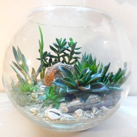 Флорариум в аквариуме_ArtFloria