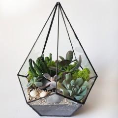 Геометрический флорариум «Капля»