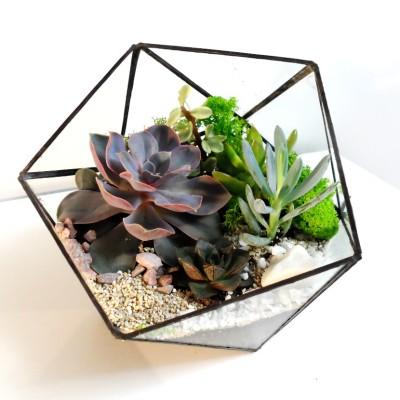 Геометрический флорариум «Икосаэдр»