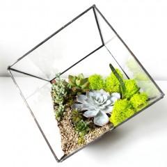 Геометрический флорариум «Куб»