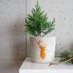 Бетонная ваза/кашпо с рисунком