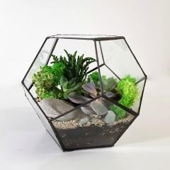 Геометрический флорариум «Додекаэдр»