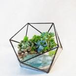 Флорариум в аквариуме с водой_2_ArtFloria