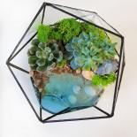 Флорариум в аквариуме с водой_3_ArtFloria