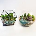 Флорариум в аквариуме с водой_4_ArtFloria