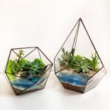Флорариум в аквариуме с водой_8_ArtFloria